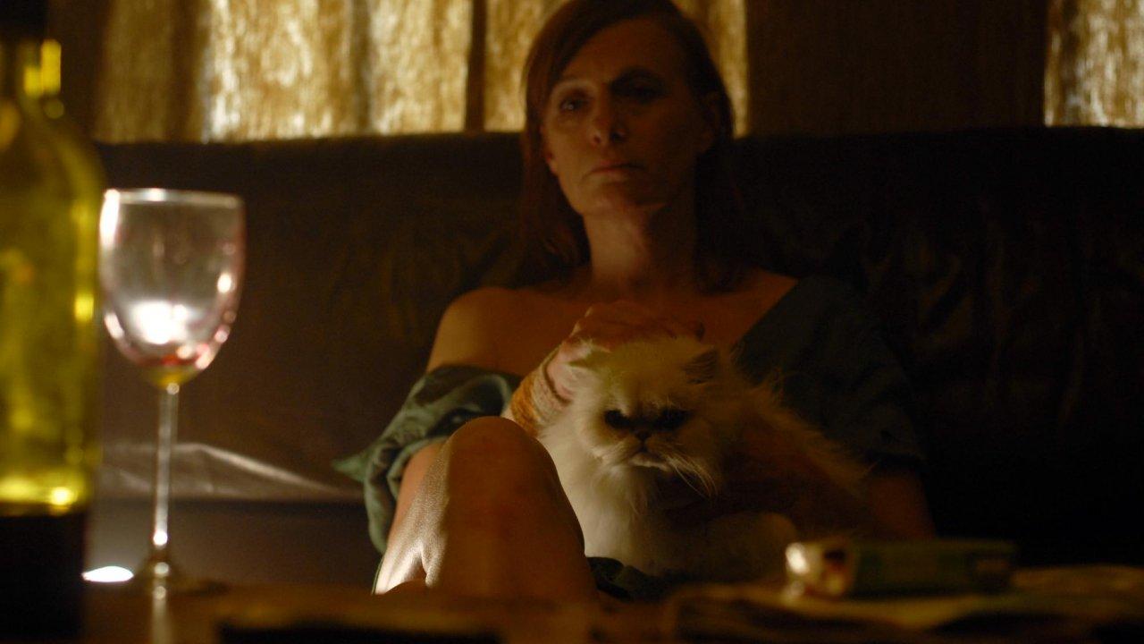 Main still: Of Cats & Women